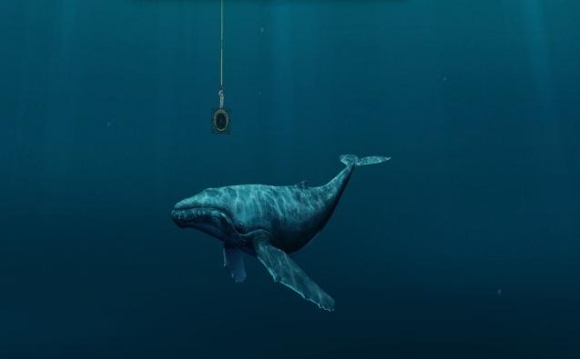 Le chant des baleines repris aux quatre coins du monde