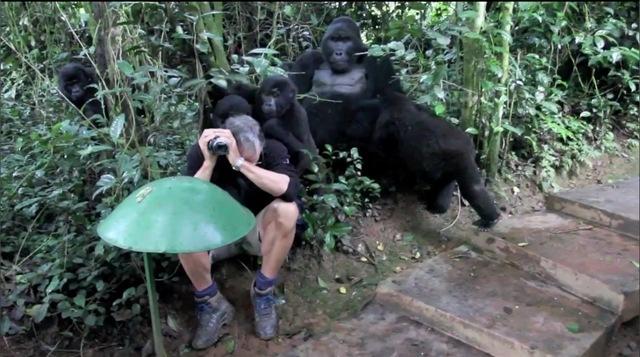 Berühmt Vidéo : On se sent tout petit avec un dos argenté derrière soi  AI58