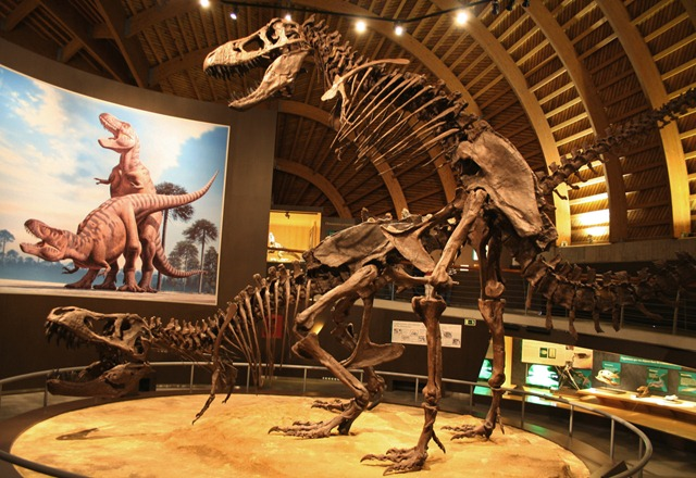tyrannosaurus-sexe_thumb.jpg