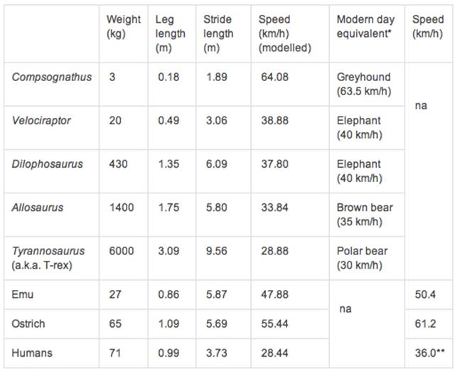 Comparaison-vitesse-dinosaure-humain-mammifères