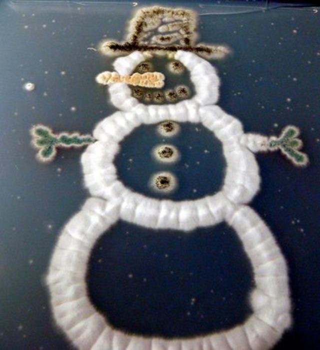 Bonhomme-neige-moisissures