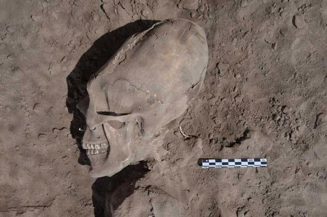 Crâne-applati-mexique