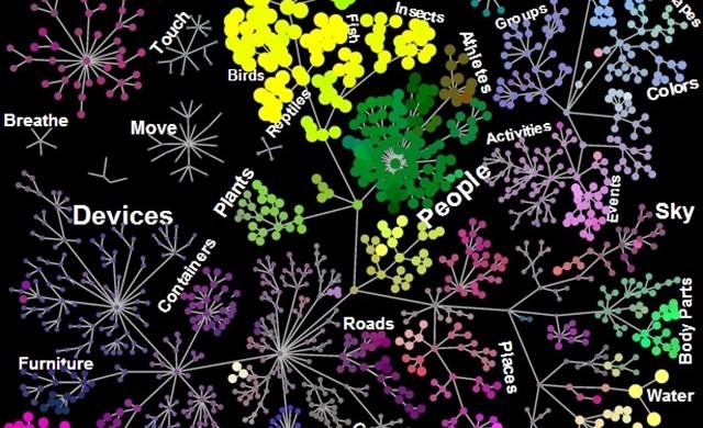 Et voici l'organisation sémantique effectuée par notre cerveau lorsque nous regardons ce qui nous entoure.