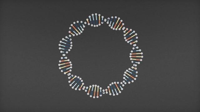 ADN12_thumb.jpg