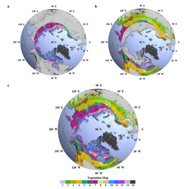 Carte-végétation-arctique