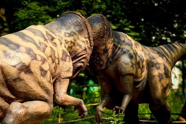 Pachycephalosaurus5_thumb.jpg