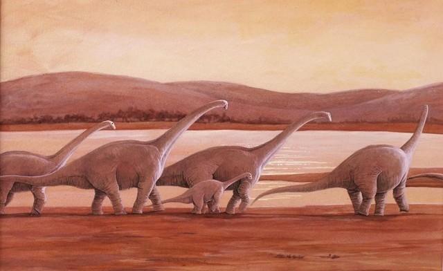 alamosaurus_thumb.jpg