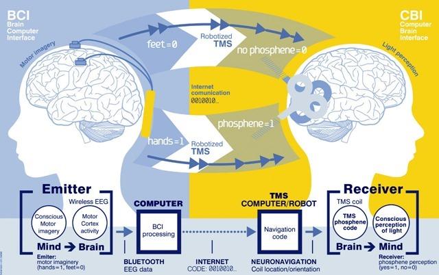 Schéma-Communication-cerveau-cerveau
