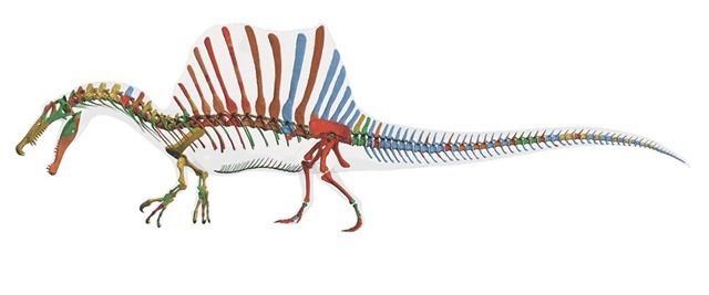Spinosaurus_thumb.jpg