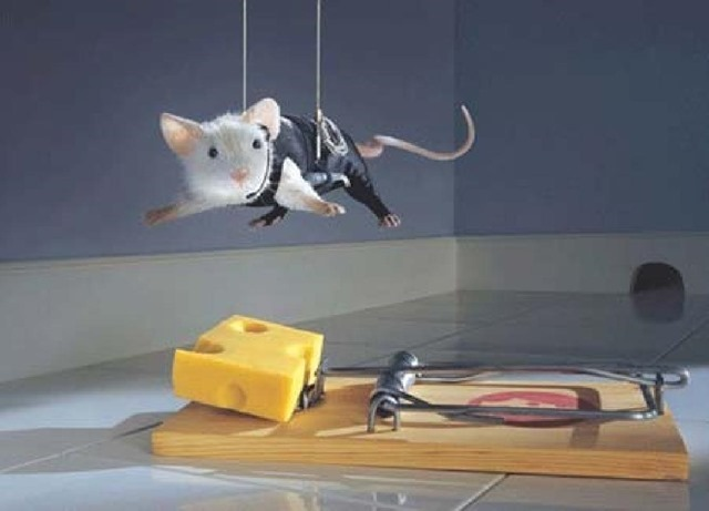 smart_mouse3_thumb.jpg