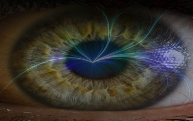 magnétique-vision