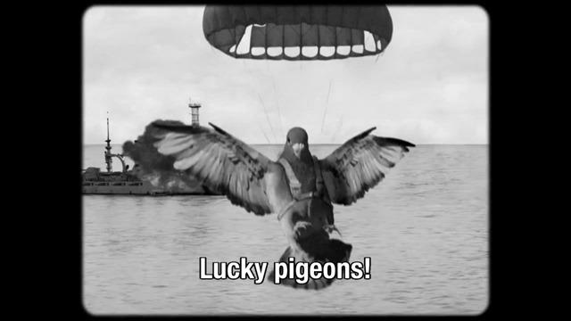 pigeon-missile
