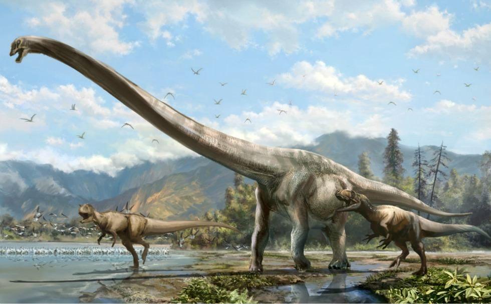 """Dinosaure """"Dragon"""" : comment supporter un cou représentant presque la moitié de la longueur de son corps ?"""