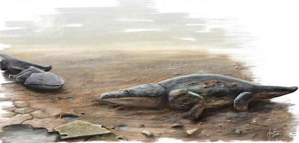Metoposaurus-algarvensis.jpg