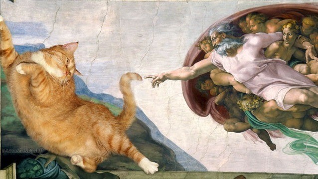 Les chats n'ont vraiment pas besoin de nous et il faudrait le prendre comme un compliment