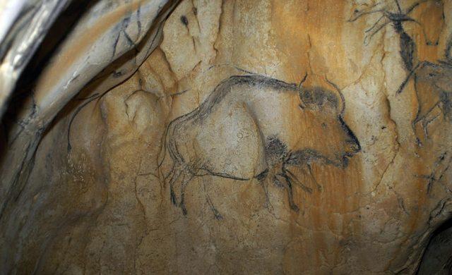Bison-priscus-grotte-chauvet.jpg