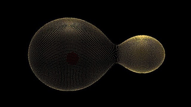 étoile-binaire