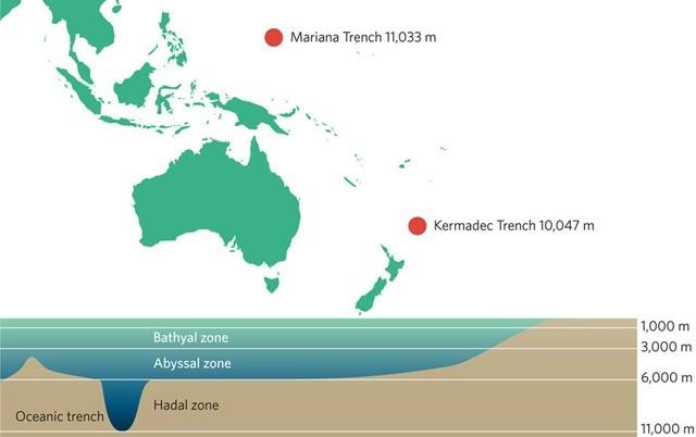 fosses océaniques