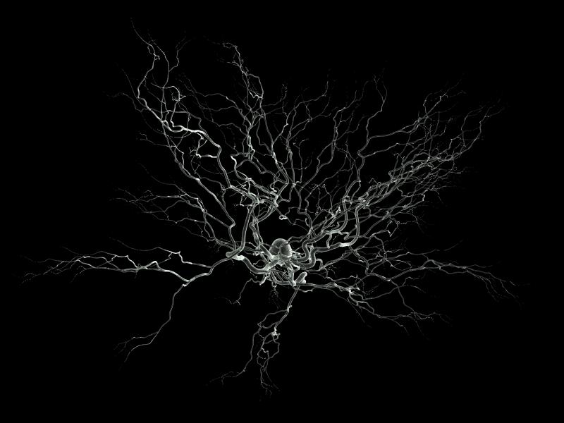 Neurone : avons-nous sous-estimé la puissance de calcul de notre cerveau ? - GuruMeditation