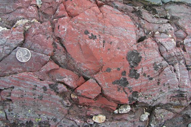 roche ferrigineuse fossile-17