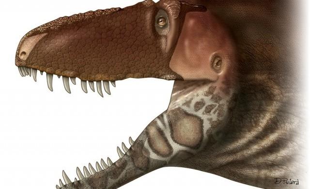 Daspletosaurus-horneri3.jpg