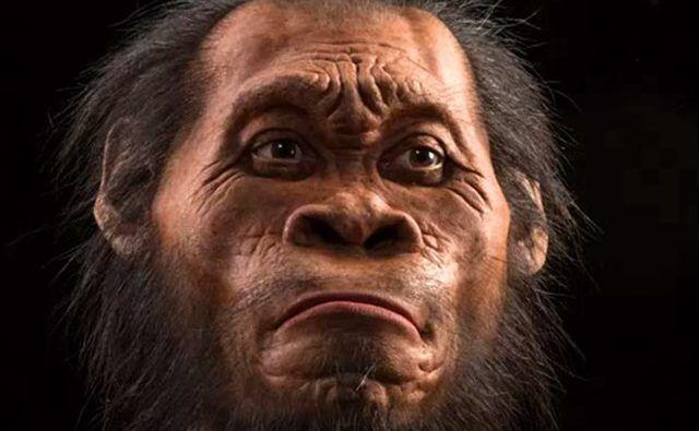 Homo-naledi-17_thumb.jpg