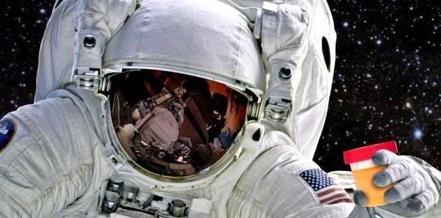 Comment des levures pourraient permettre aux astronautes de fabriquer des objets à partir de leur urine