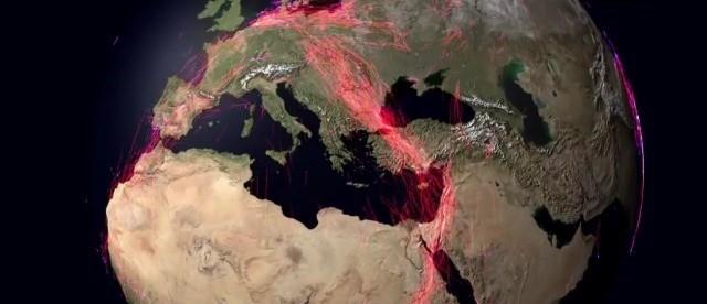Vidéo : visualiser la migration de 150 espèces animales à travers le globe