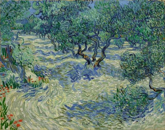 van-gogh-olivier-sauterelle1